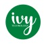 Praca IVY Technology Poland Sp. z. o. o.